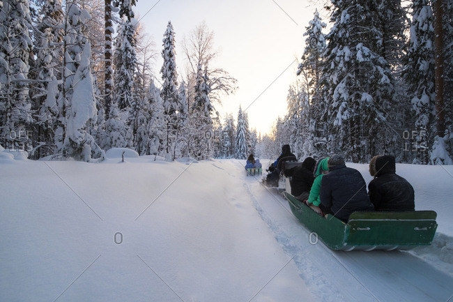 Rear view of tourists sledding on snow covered field against trees