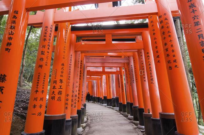 Japan, Kyoto - December 20, 2016: Torii gate at Fushimi Inari Shrine