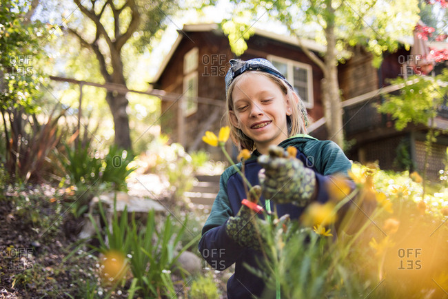 Happy boy cutting flowers while standing in garden