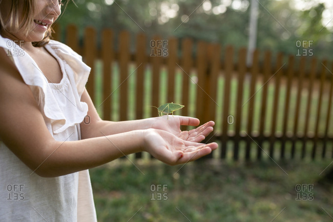 Midsection of girl holding katydid against fence at park