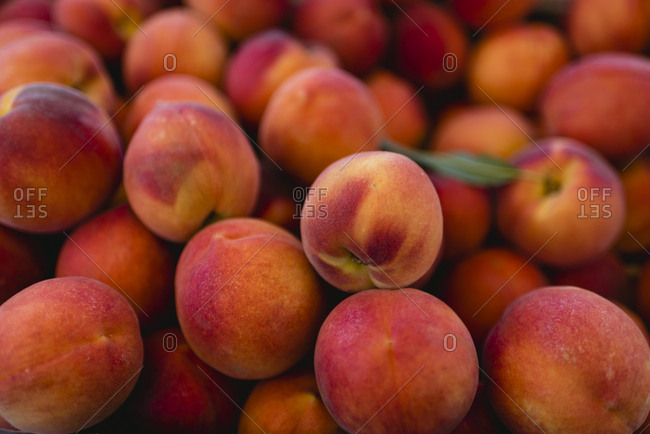 High angle view of apricots for sale at market