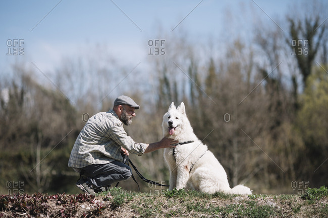 A young dog enjoying the attention from her owner