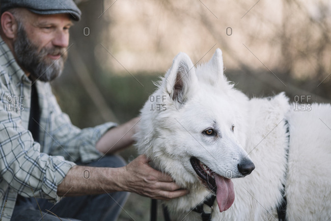 Bearded Man Stroking white fluffy dog