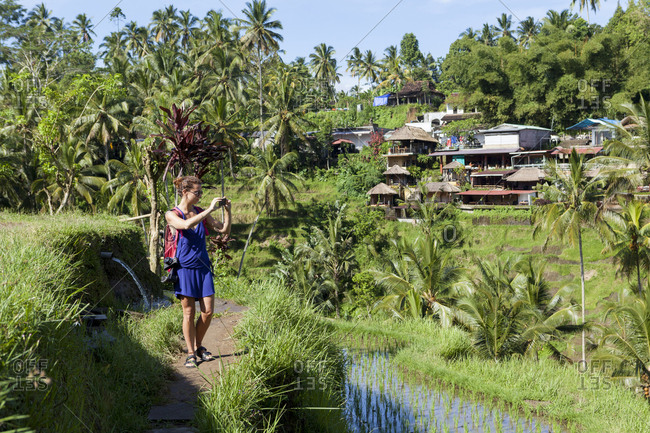 Caucasian girl taking picture with smartphone. Rice terrace Ubud Bali