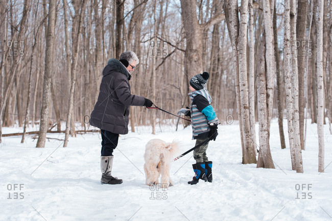 Grandma and grandson walking a dog on a snowy wooded trail.