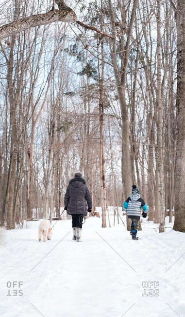 Older woman and child walking a dog on a snowy wooded trail.