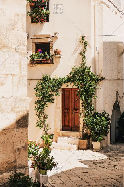 Wooden Door in Italian Village