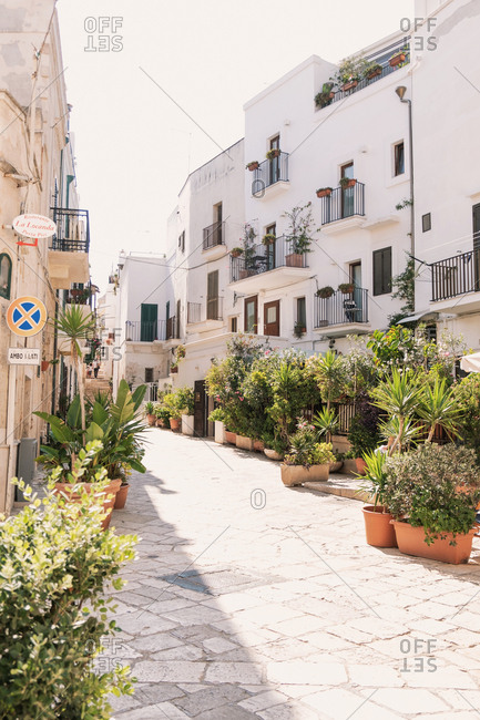puglia, italy - September 27, 2019: Plant-lined Street in Italian Village