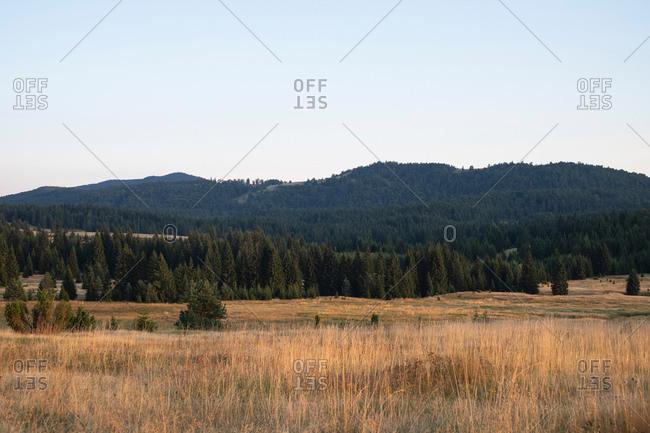 Vast rural landscape with forest covered hills