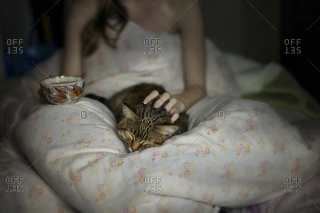 Midsection of woman petting cat while sitting on bed
