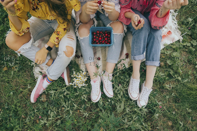 Low section of female friends with cherries sitting on field in forest