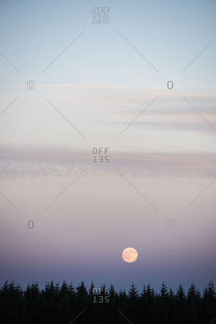 Scenic view of full moon over trees in sky during dusk