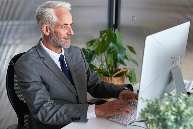Senior businessman using computer in office