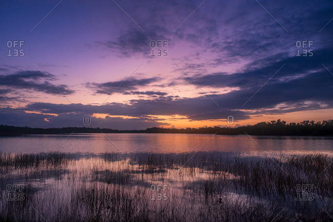 River under purple sky at sunset in Everglades National Park, Florida, USA