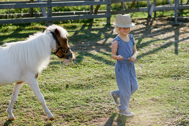 Stylish little girl walking with cute pony on farm on beautiful summer day