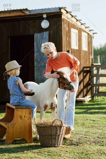 Stylish little girl and her young attractive mother grooming miniature horse on farm on beautiful summer day