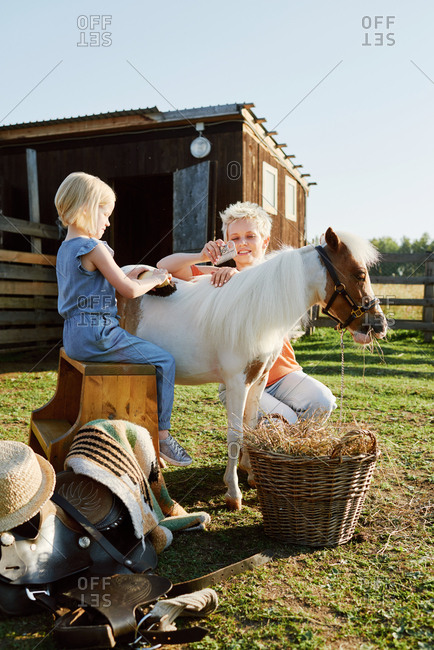 Young blond woman and her little daughter brushing miniature horse on farm on bright summer day