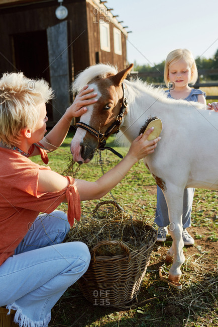 Young blond woman and her little daughter petting and brushing cute miniature horse on farm on lovely summer day
