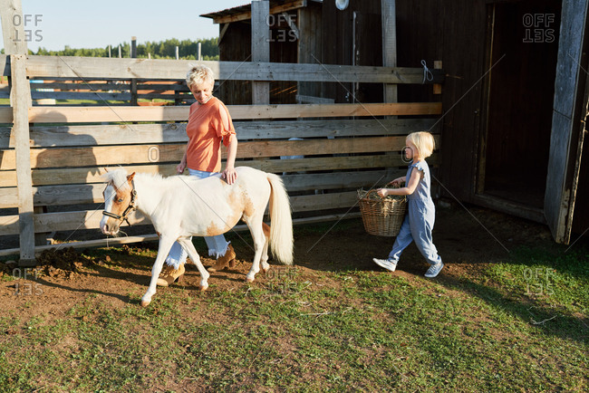 Young blond woman walking with miniature horse on farm while her little daughter following them with hay basket