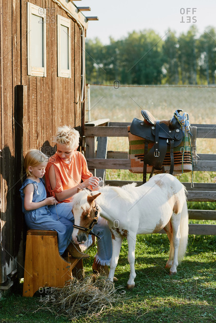 Young blond-haired woman sitting on bench and showing her little daughter how to groom a cute pony standing beside them