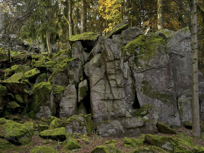 Germany, hessia, hessian Rhon nature reserve, unesco biosphere reserve, the steinwand close poppenhausen, autumn