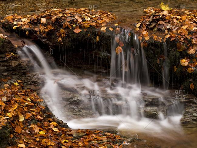 Germany, hessia, hessian Rhon nature reserve, unesco biosphere reserve, gersfeld, the field brook / feldbach in the kaskadenschlucht (gulch), autumn