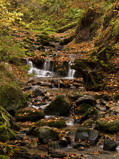 Germany, hessia, hessian Rhon nature reserve, unesco biosphere reserve, gersfeld, the field brook / feldbach in the kaskadenschlucht (gulch), autumn