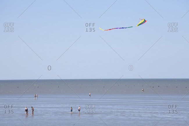 Dragons, mudflats in cuxhaven-duhnen, north sea spa cuxhaven, lower saxony, germany, europe