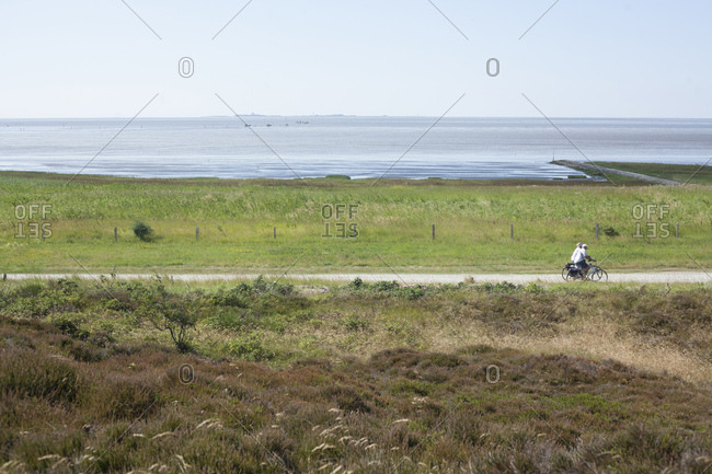 Duhner moor, mudflats in cuxhaven-duhnen, north sea spa cuxhaven, lower saxony, germany, europe