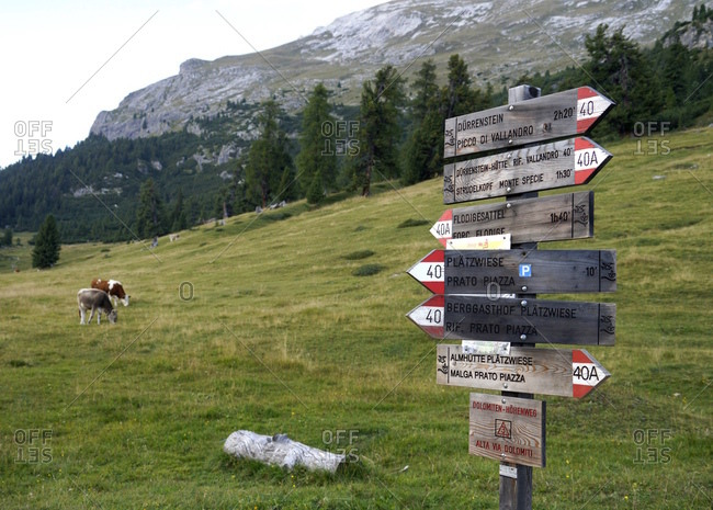 Europe, italy, south tirol, pragser dolomiten / dolomiti di braies (mountains), platzwiese, signpost, footpath, durrenstein