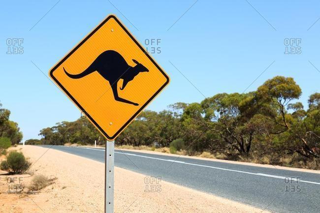 Kangaroo warning sign by a road, South Australia, Australia