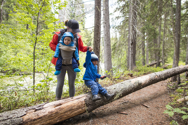 Mother hikes through the forest with her two children.
