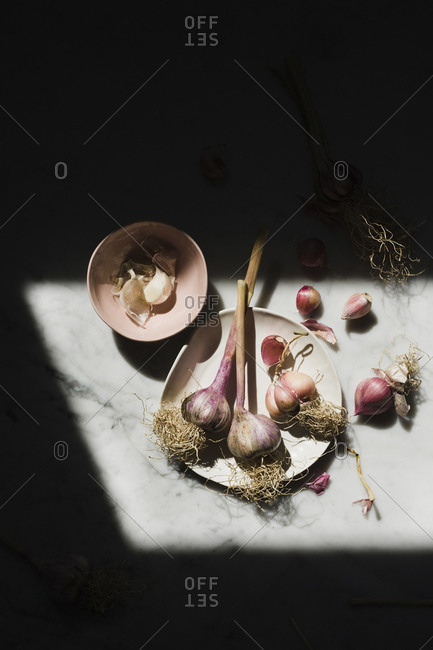 High angle view of garlic on table in darkroom