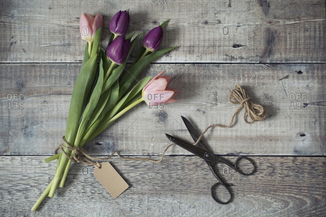 Overhead view of tied up tulips with scissor, jute string and tag on wooden table