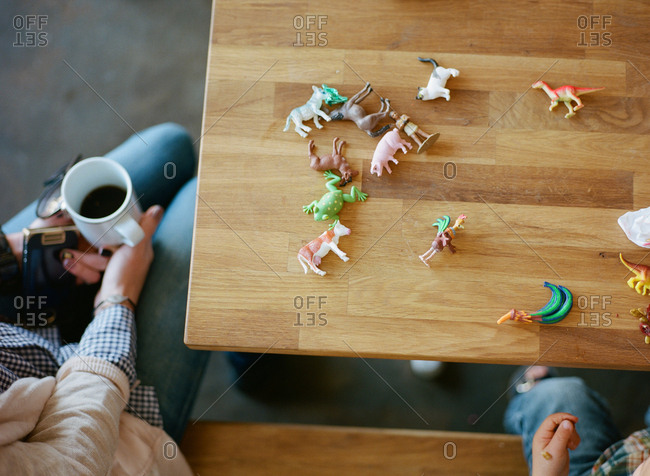 colorful array of plastic animal toys seen from above on wooden table