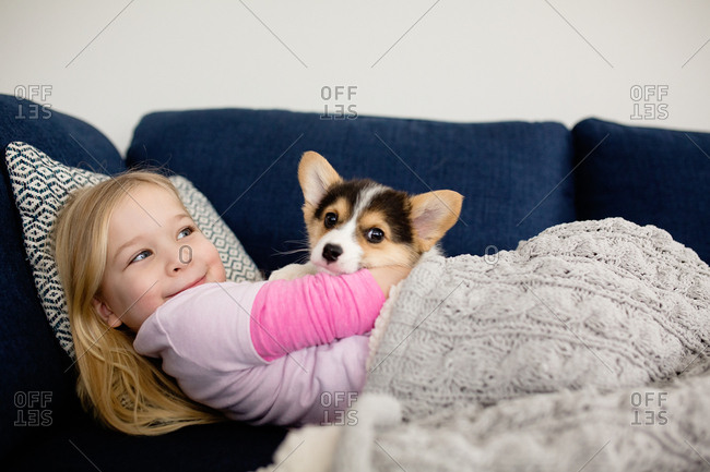 Young blonde girl snuggling small corgi puppy inside on blue couch