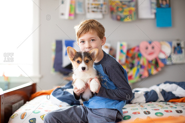 Cute young boy holding adorable corgi puppy on lap in bedroom