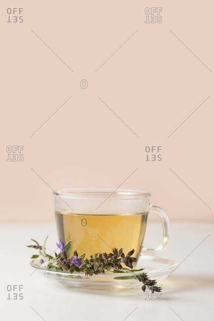 Cup of fresh sage tea with sage flowers