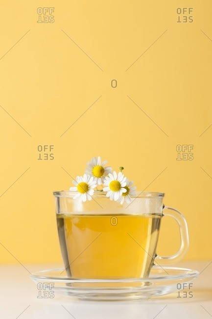 Cup of fresh camomile tea with camomile flowers