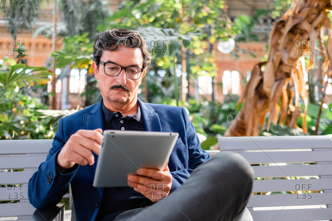 Smart elderly male remote worker in formal wear and trendy eyeglasses sitting with crossed legs on bench and working with digital tablet at park