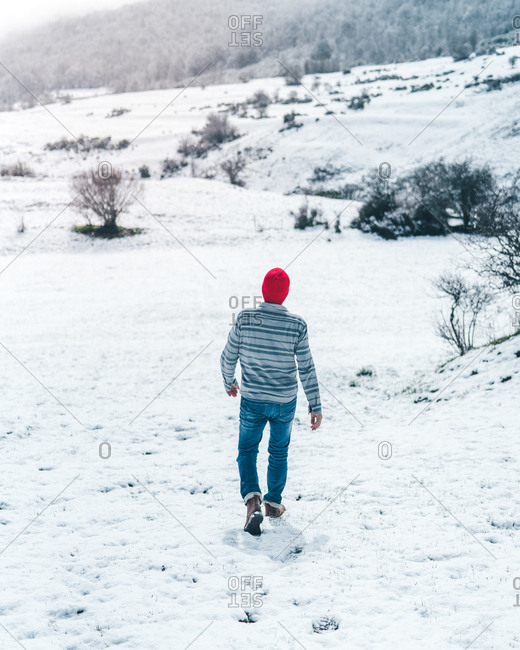 Back view of casual male in red knitted cap wearing striped sweater and jeans walking on winter field with hills covered with snow