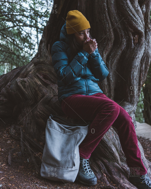 Young girl in warm active wear sitting with backpack on old massive tree root and warming hands during trekking in autumn forest