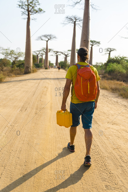 Back view of man walking in the Avenue of the Baobabs carrying a yellow case, Morondava, Madagascar