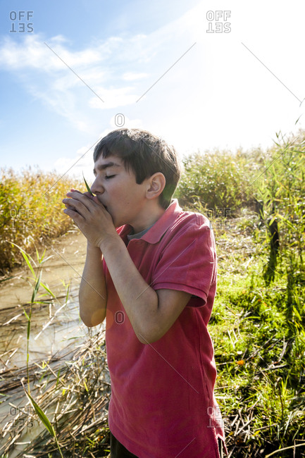 Boy blowing on grass blade at water course- Darss- Mecklenburg-Western Pomerania- Germany