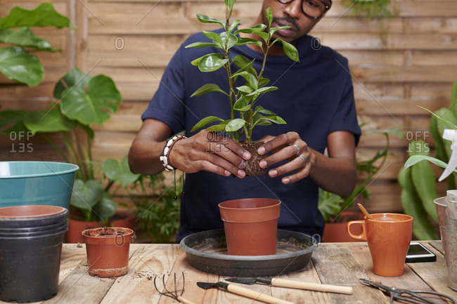 Young man repotting a plant on his terrace