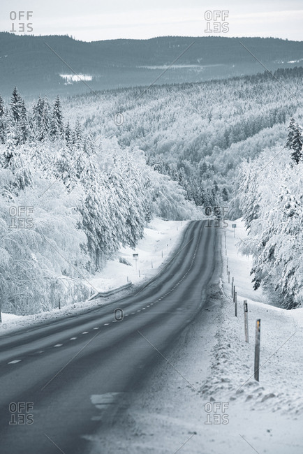 View of winter road