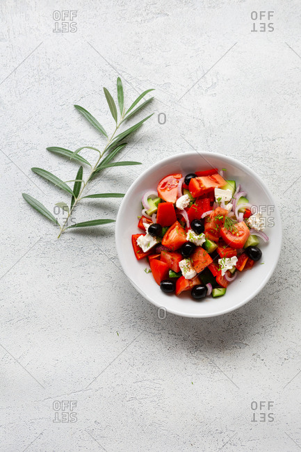 Fresh salad in a bowl beside an olive branch