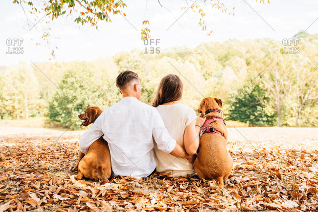 Lesbian couple embraced while sitting in the leaves while walking dogs