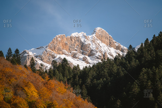 Autumn trees, pine forest and a snowy mountain peak in French Pyrenees