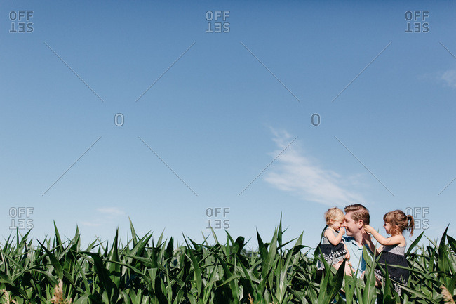 Father holding two daughters in a cornfield
